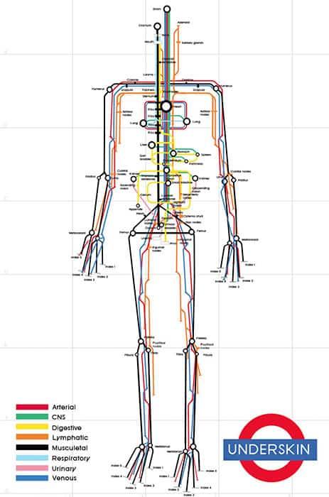 ostheopathie carte metro humain